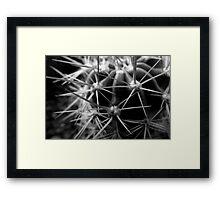 Spike close up Framed Print