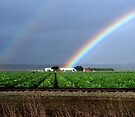"""""""Crop at The End of The Rainbow"""" by waddleudo"""
