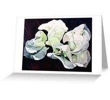 """""""Bugambilia"""" - oil painting of white bougainvillea blossoms Greeting Card"""
