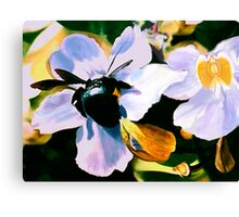 """Laticia"" - Mexican flower and a large black bee Canvas Print"