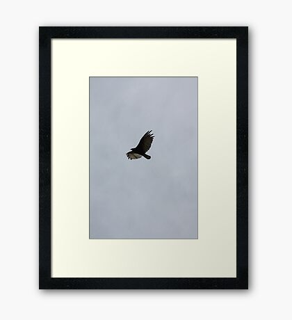 High Over the Prairies Framed Print