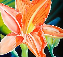 """King for a Day"" - orange day lily by James  Knowles"
