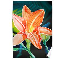 """""""King for a Day"""" - orange day lily Poster"""