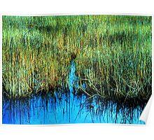 """""""Wetlands Cleavage"""" Poster"""