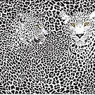Black and white Leopards Print by artonwear