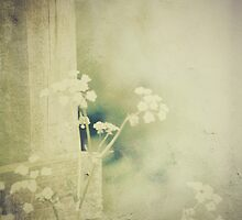 Where the path fades by Nikki Smith