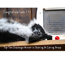 Banner for Sharing & Caring Photographic Print
