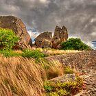 Terrick Terrick National Park, Victoria, Australia by John Bullen