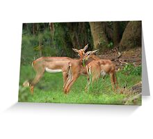 Bambi and Friends Greeting Card