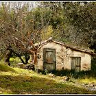 Little Henhouse. Gastouri Corfu by fruitcake