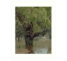 A River In Flood Art Print