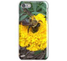 Beautiful creatures  iPhone Case/Skin