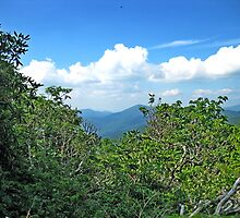 Blue Ridge Mountain View by glennc70000