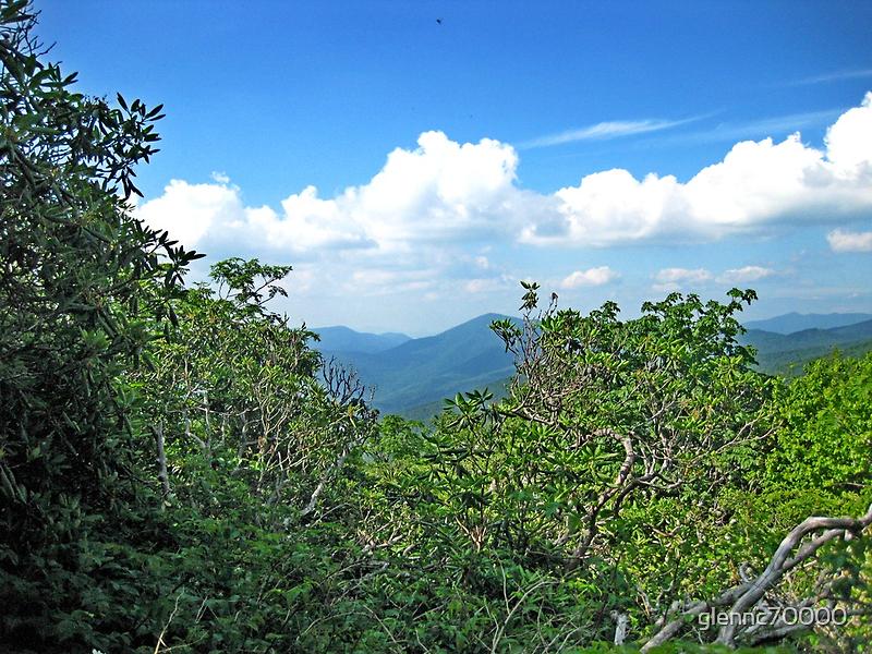 Blue Ridge Mountain View by Glenn Cecero