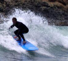 Surf's Up Dude Sticker