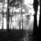 Burning through the Mist by Hope Ledebur