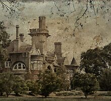 The Castle by garts