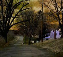 Country Lane by Judi Taylor