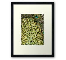 Colourful Arches Framed Print