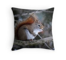""""""" Hurry Up! It's really cold out here, eh! """" Throw Pillow"""