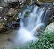 A small waterfall in the Huntington Library in LA, CA by Joe Bashour