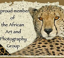 African Art and Photography Banner Challenge by Owed To Nature