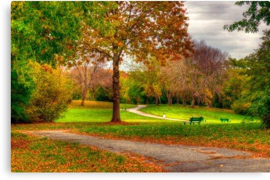 A Walk In Autumn by Monica M. Scanlan