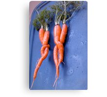 carrots on a double date . . . . Canvas Print