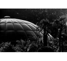 1983 - landed in paradise Photographic Print