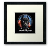 American Pit Bull Terrier Framed Print
