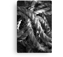 Rope Art Canvas Print