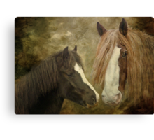 Big Max And Little Baby Canvas Print