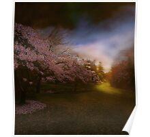 Illuminating perplexion - the park Poster