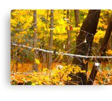 Autumn speed Canvas Print