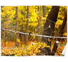 Autumn speed Poster