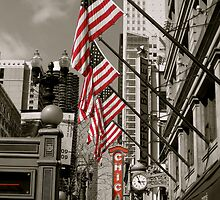 Chicago, America by Rae Breaux