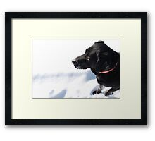 Do you see what i see Framed Print