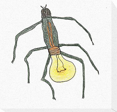 light bulb bug by dthaase