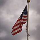Old Glory by Sally Kady