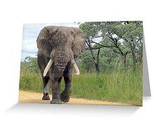 The ELEPHANT (Loxodonta Africana) Greeting Card