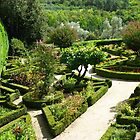 Gardens at Mateus Palace by Marilyn Harris