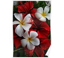 Frangipani and Red Poster