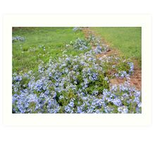 Blue Flowers on the Ruins Art Print