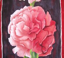 Carnation glow by Husna Rafath