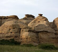 Writing-on-Stone Provincial Park (Áísínai'pi) by Alyce Taylor