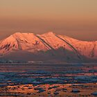 Sunset, Lemaire Channel, Antarctica by Neville Jones