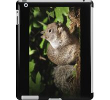 Cute Squirrel Photo and Cell Phone Case iPad Case/Skin