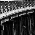 Trestle Bridge by Sarah Howarth [ Photography ]
