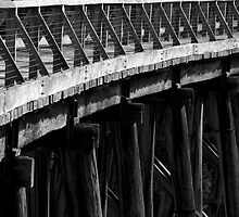 Trestle Bridge by Sarah Howarth [ Photography ]