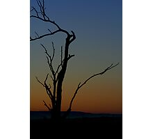 lonely morning - NSW Australia Photographic Print